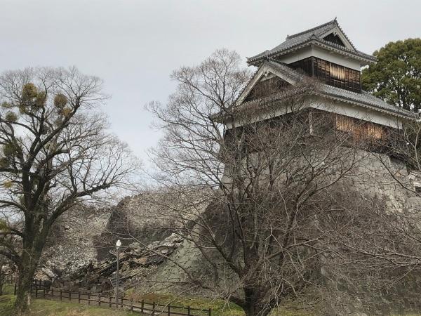 横から見た熊本城の未申櫓