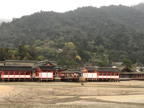 大鳥居付近から見た厳島神社の社殿