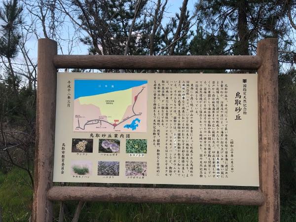 鳥取砂丘の案内